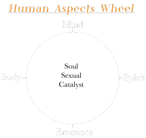 human_aspects_wheel